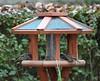 Sparrows 03.12 (4)