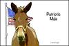 Patriotic Mule by lamarstyle