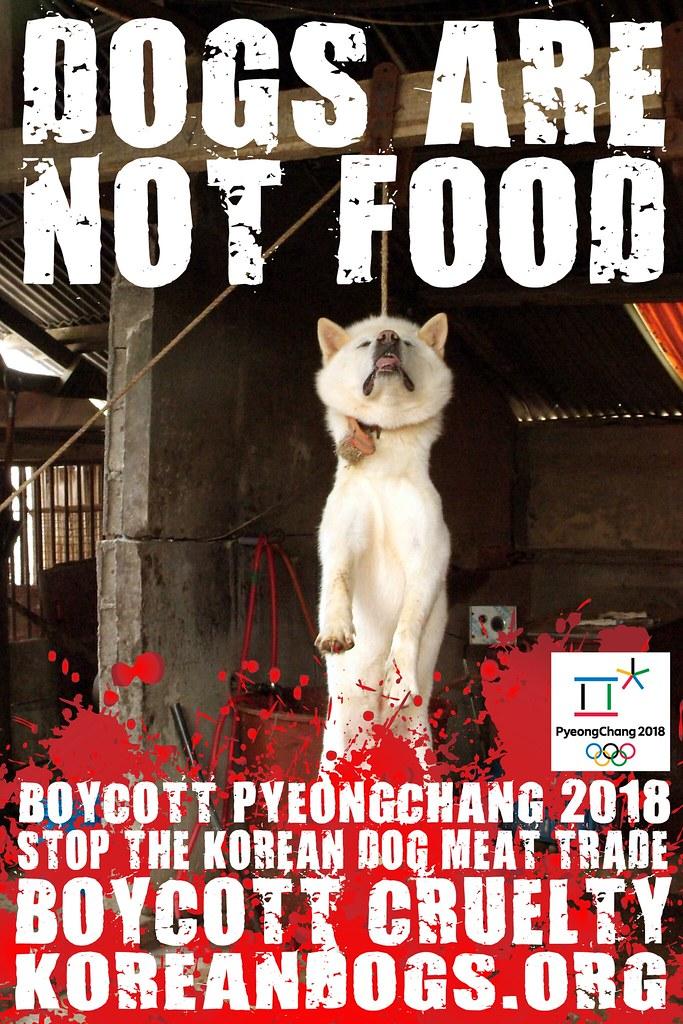 Boycott_Pyeongchang_1440x2160_t