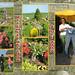 2009-05-02 (vrijwilligersdag)