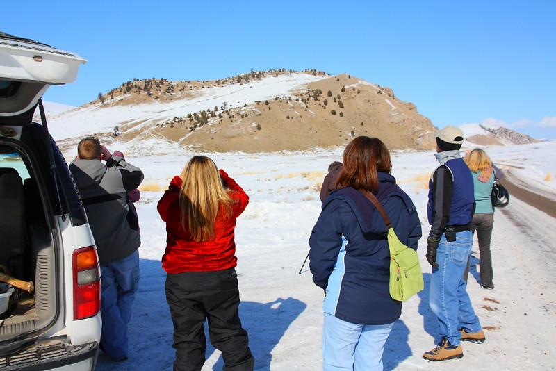 IMG_9368 Caravan Tour, National Elk Refuge