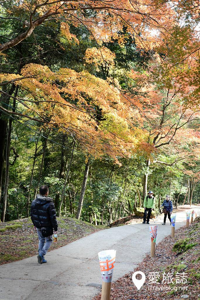 京都赏枫景点 神护寺 砚石亭 19