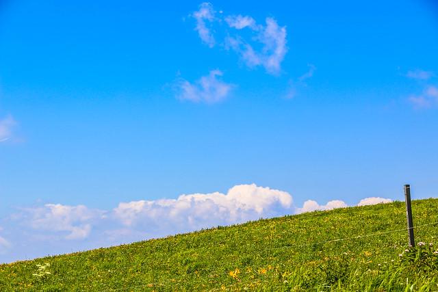 2014-07-26_00151_霧ヶ峰.jpg
