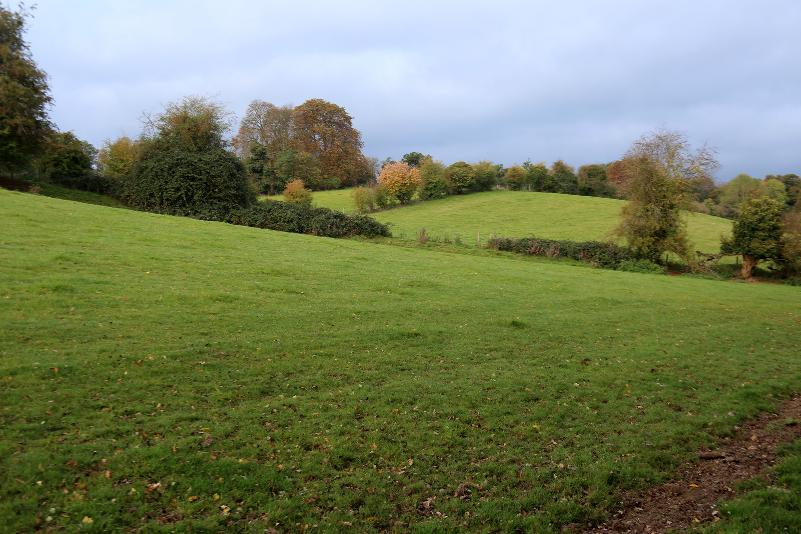 Footpath between Henley-on-Thames and Rotherfield Greys