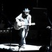 Neil Young by Coco Le
