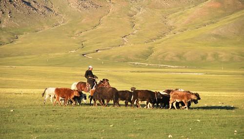 165 Viaje al oeste de Mongolia (92)