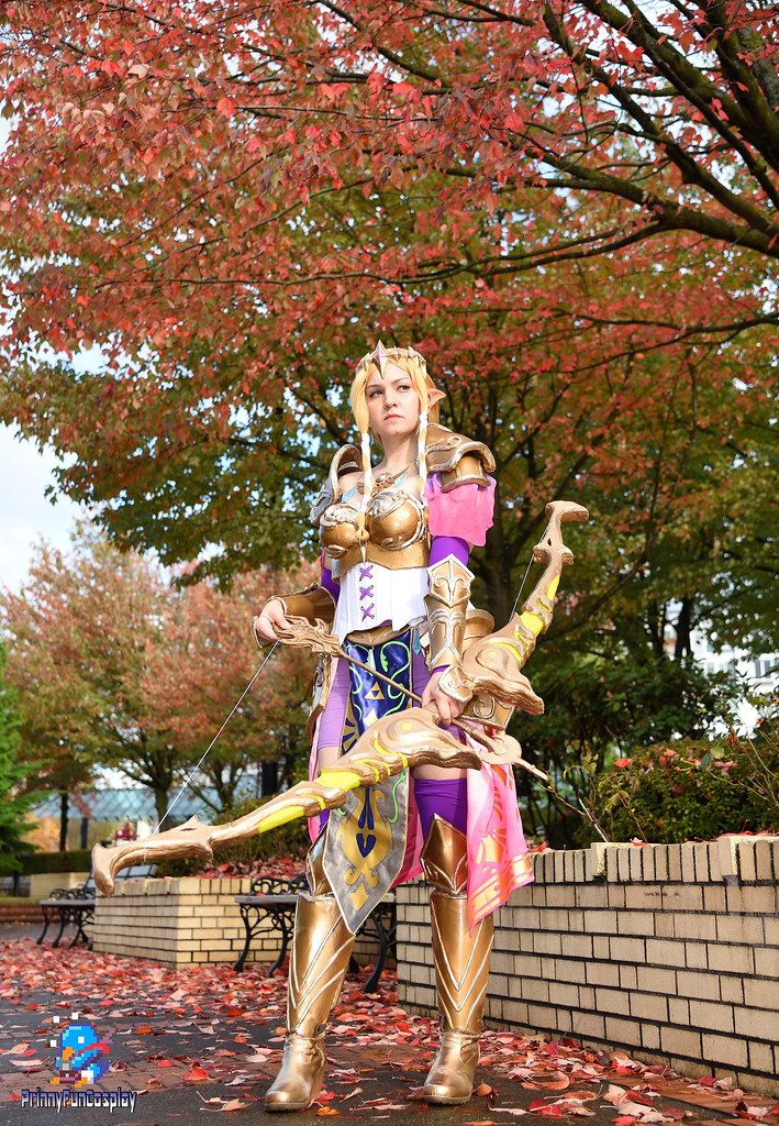 The Legend Of Zelda Hyrule Warriors Princess Zelda Dsc 3