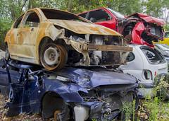 Damaged Cars at the Scrapyard