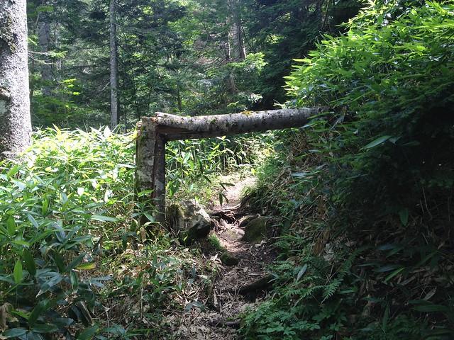 焼岳 中尾温泉ルート 木のゲート