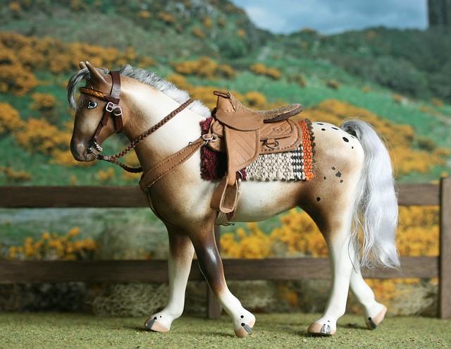 Spud's Western tack