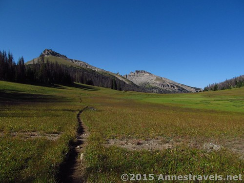 From the far end of Bonneville Pass, Shoshone National Forest, Wyoming