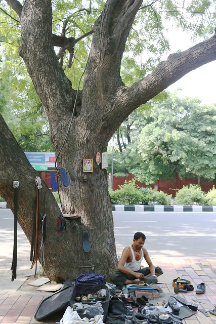 city nature bachchan dev ram s neem tree lodhi road the delhi  all rights reserved