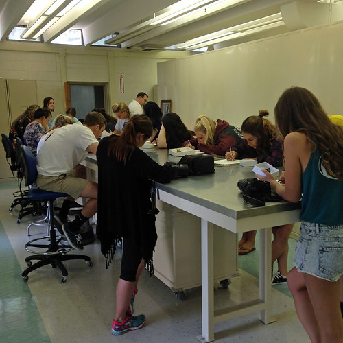 Photo of students standing at a lab bench drawing on sketchbooks.