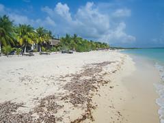 Palancar beach in Cozumel, Mexico