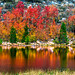 Nikon D810 California Fall Colors Autumn Foilage Fine Art High Sierras! AF-S NIKKOR 28-300mm f/3.5-5.6G ED VR from Nikon by 45SURF Hero's Odyssey Mythology Landscapes & Godde