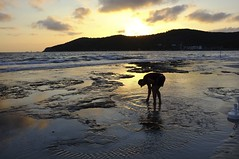 DSCF8940 Playa Ses Salines Ibiza