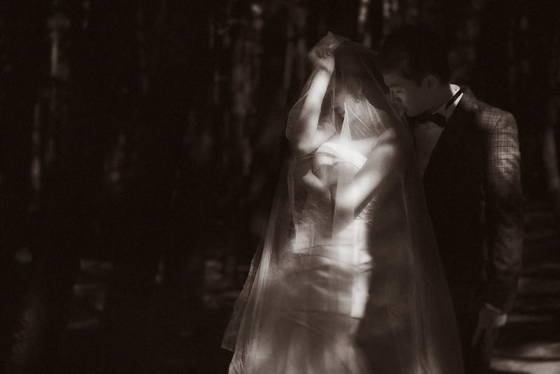 顏氏牧場,後院婚禮,極光婚紗,海外婚紗,京都婚紗,海外婚禮,草地婚禮,戶外婚禮,旋轉木馬_0001