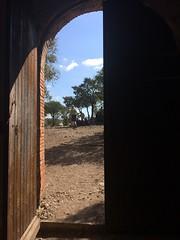 Door to the sunlight