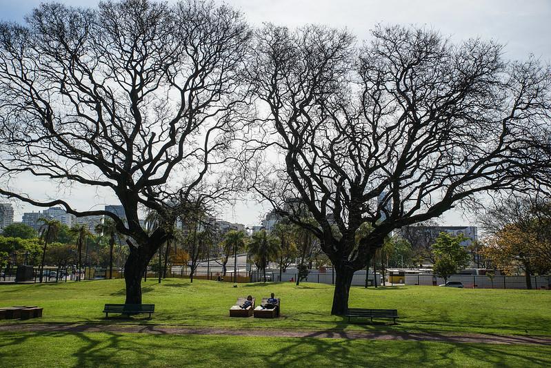 Park Buenos Aires Argentina Argentiina trees puut