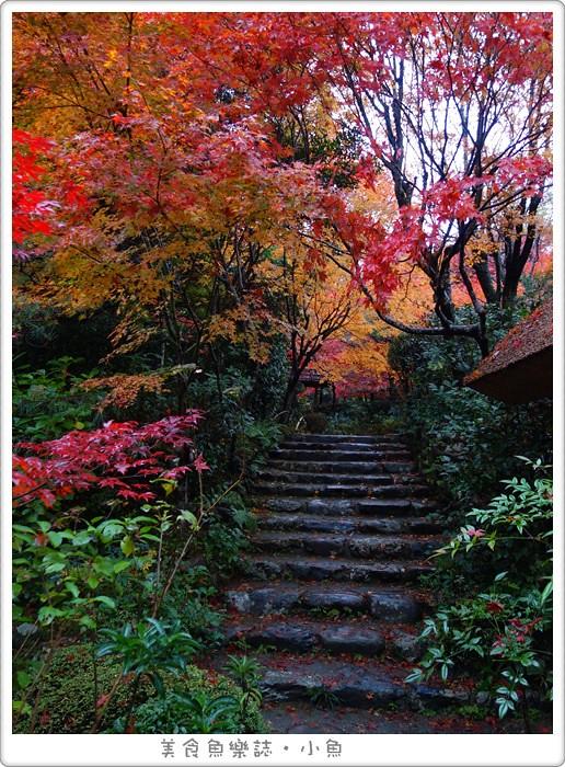 【日本旅遊】京都 厭離庵/嵐山賞楓名所/秋季限定