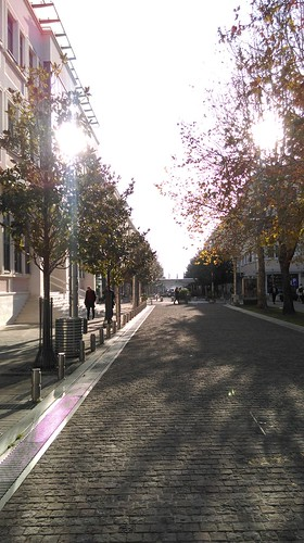 podgorica montenegro winter sunny clear day njegoševa