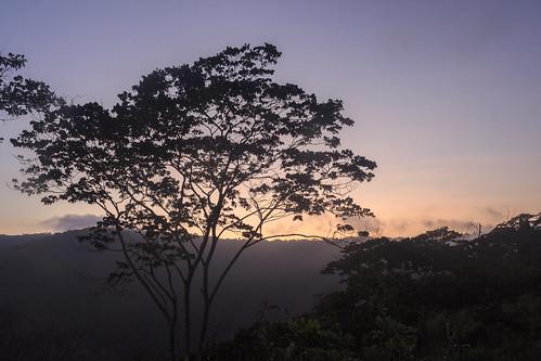 venezuela yaracuy bruzual sunrise