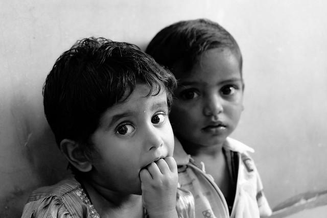 Speed Trust nursery, Chennai, Fujifilm X-T10, XC50-230mmF4.5-6.7 OIS