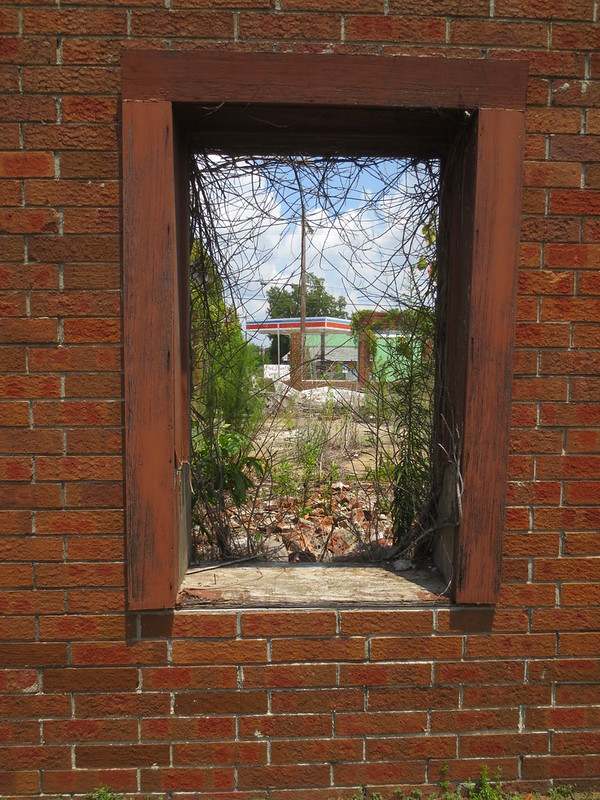 Window on decay