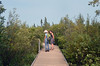 The Big Bog boardwalk is over a mile long. by U.S. Fish and Wildlife Service - Midwest Region