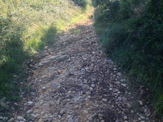 6 Sep'15 - Altos Sarria
