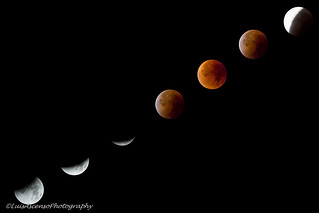 Moon total eclipse