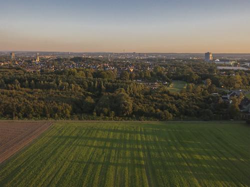 Dortmunder Herbst 2