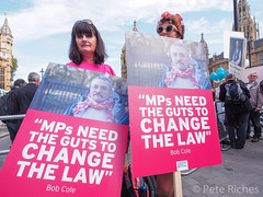 Dual Yes and No protest against Assisted Dying Bill - 16.01.2015 -110510.jpg