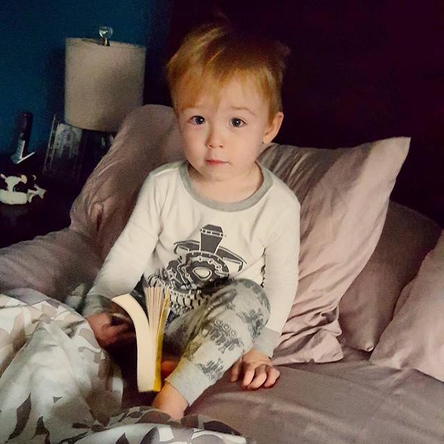Bedroom eyes #365photochallenge #matteotheham #alwaysreading #bedroomeyes