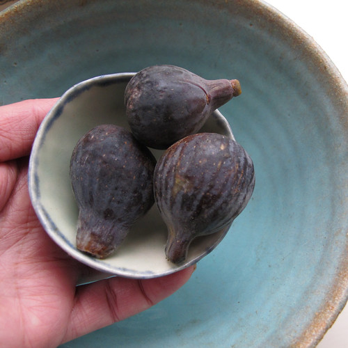 black figs (bowl within bowl)