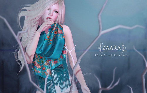 {Zaara} : Shawls of Kashmir for Collabor88