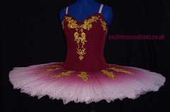 Ivory tutu with burgundy bodice and airbrushed skirt