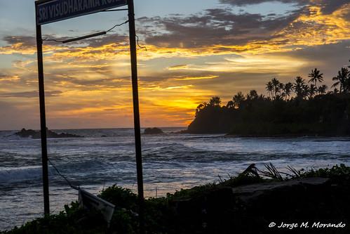 southernprovince srilanka lk signpost sunset sea clouds sky sunrise palmtree