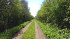 Sur l'ancienne ligne de Breuil-Barret à Velluire(3)