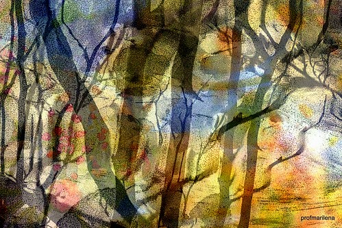 1-Collage4 - the tree of life, abstract