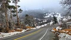 Snow near Big Bear earlier today. I heard more on the way. #california #beautiful #outdoors #outside #wilderness #forest #trees #travel #landscape #nature #johnkeraphotography #mountains #winter #fog #canon #canon_photos #road #snow