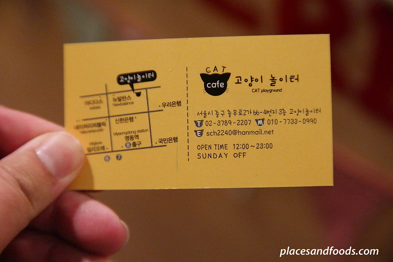 cat cafe playground seoul map
