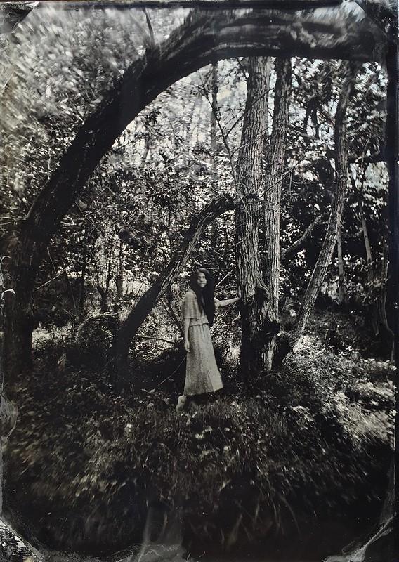 Wetplate / tintype