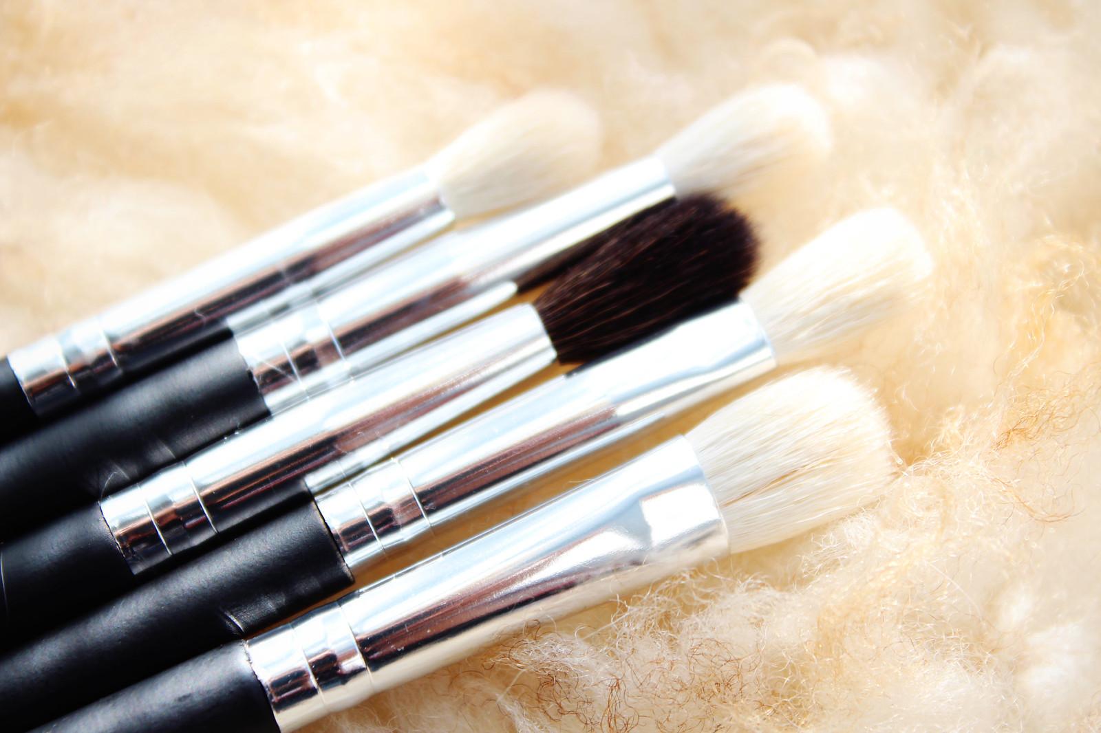 ebay-blending-brushes-review