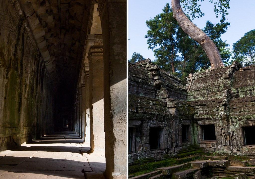 Angkor - Ta Prohm2