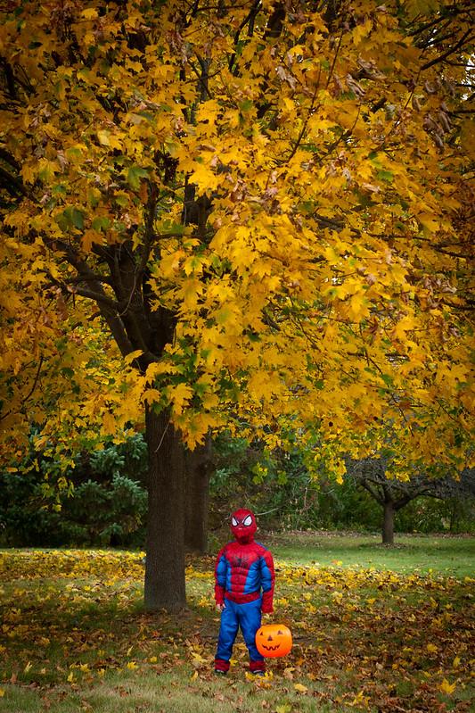 Halloween 2015-7