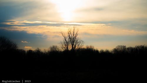 sunrise landscape us newjersey unitedstates monmouthcounty jerseyshore landscapephotography coltsneck dorbrook monmouthcountyparksystem dorbrookrecreationarea