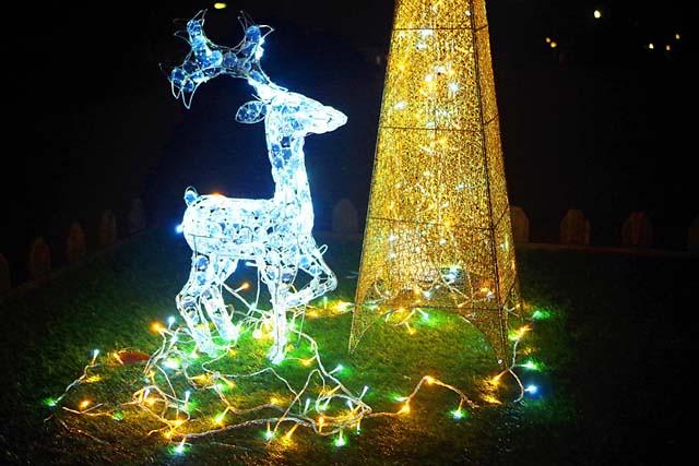 toomilog-Christmasmarket2015004