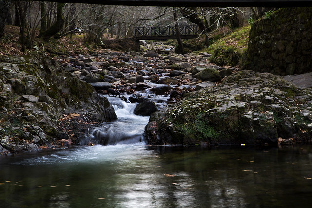 Reserva Saja-Besaya, Cantabria