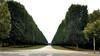 Versailles  - parc